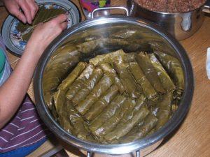 Hulya6Vine leaves in the pot