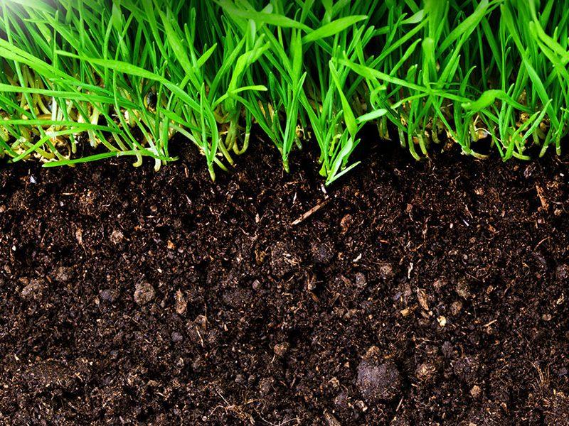 soil-secrets